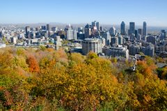 Montreal during fall foliage Stock Image