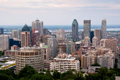 Montreal highrise. View from Mount Royal at daytime Stock Photos