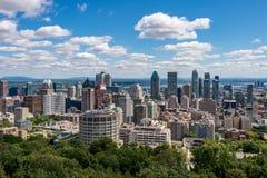 Montreal horisont från den Kondiaronk belvederen royaltyfria bilder