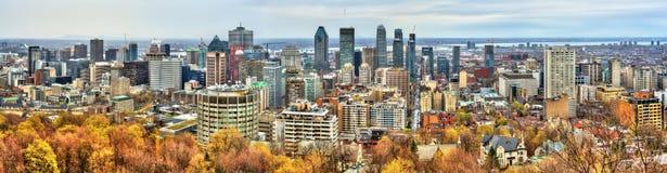 Montreal horisont från Mont Royal, Kanada Fotografering för Bildbyråer