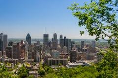 Montreal horisont från Mont Royal Mountain Arkivbild