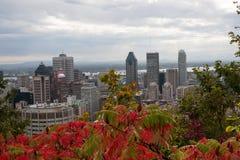 Montreal horisont i nedgången Royaltyfri Fotografi