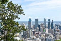 Montreal horisont i sommar Arkivfoto