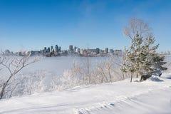 Montreal horisont och St Lawrence River i vinter Arkivfoton