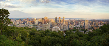 Montreal horisontpanorama Arkivfoto