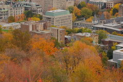 Montreal im Stadtzentrum gelegen während des Falles Stockbilder