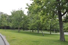 Montreal, 27 Juni: Park van Onderstel Koninklijk van Montreal in de Provincie van Quebec Royalty-vrije Stock Foto