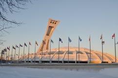 The Montreal Olympic Stadium Royalty Free Stock Photo