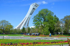 He Montreal Olympic Stadium. MONTREAL,CANADA - MAY 18.The Montreal Olympic Stadium and tower on may 18, 2014. It's the tallest inclined tower in the world.Tour Stock Image