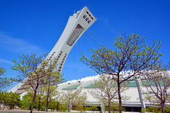 The Montreal Olympic Stadium and tower Stock Images