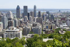 Montreal, Quebec, Canada, looking bird's eye view, a view of downtown Montreal from Mont royal royalty free stock images