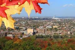 Montreal Quebec med Olympic Stadium på hösten Royaltyfria Bilder
