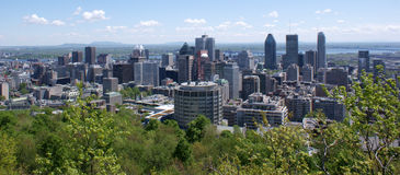 Montreal skyline. An overview of the skyline of the city of Montreal, Quebec, Canada Royalty Free Stock Photos