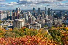 Montreal Skyline with Autumn colours stock image