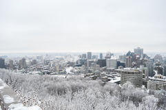 Montreal Skyline in snow. In winter, Canada stock images