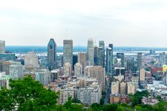 Montreal Skyline in summer. Canada royalty free stock images