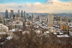 Montreal Skyline in winter. From Kondiaronk Belvedere December 2016 royalty free stock photography