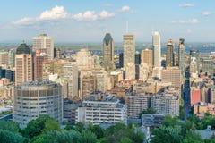 Montreal stadshorisont Royaltyfri Bild