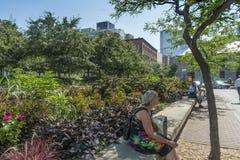 Montreal stadsplats Arkivfoton