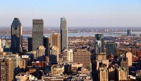 Montreal stadsskyskrapor Arkivbilder