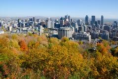 Montreal während des Herbstlaubs Stockbild
