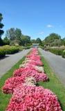 Montreal's botanical garden Royalty Free Stock Photography