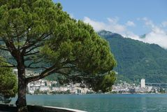Montreux från Clarens på sjöGenève arkivbild