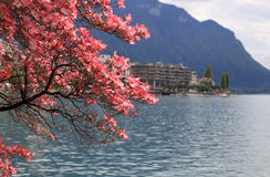 Montreux and  Lake Geneva, Switzerland. Royalty Free Stock Photo