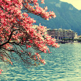 Montreux and  Lake Geneva, Switzerland. Stock Photography