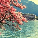 Montreux and  Lake Geneva, Switzerland. Stock Photography