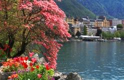 Montreux y el lago Lemán, Suiza. imagen de archivo libre de regalías