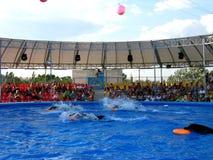 Montrez avec des dauphins dans les delphinariums Photographie stock libre de droits