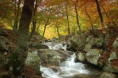 montseny河 免版税图库摄影