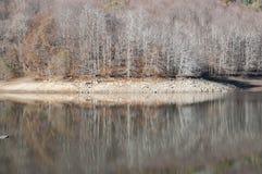 Montseny in Autumn lake Royalty Free Stock Photos