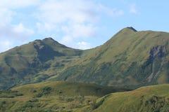 Montura del Kodiak Fotografía de archivo