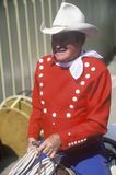 Monty legendário Montana Imagem de Stock