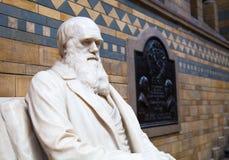 Monument de Charles Darwin, musée national d'histoire, Londres Image stock