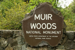 Monument de Muir Woods National Photo stock