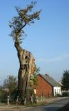 Monument de nature Images libres de droits