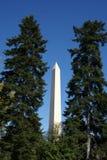 Monument de Washington Photographie stock libre de droits