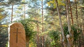 Monument en pierre antique avec une croix au cimetière en automne banque de vidéos