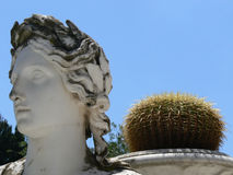 Monument et cactus Photographie stock
