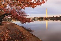Monument för tidvattens- handfat för Autumn Washington DC Arkivbild