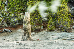 Monument Geyser Basin Spire. Siliceous spire with a long-exposure smoke seen at Monument Geyser Basin. Yellowstone National Park, Wyoming - USA Royalty Free Stock Photography
