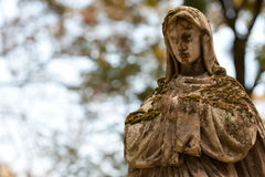 Monument Lady of Guadalupe on a cemetery Stock Photography