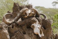 Monument in Lake Manyara Park Stock Photography