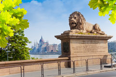 Monument of the lion on Chain bridge in Budapest Royalty Free Stock Photo