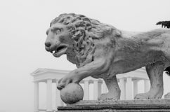 A monument of a lion. Odessa stock image