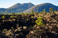 Monument national de cratère de coucher du soleil Images stock