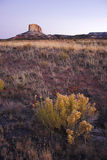 Monument national de Navajo Photo libre de droits